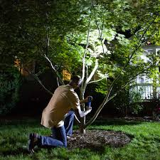 Landscape Lighting Installers Install Landscape Lighting Choose Lights Jpg