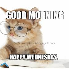 Memes Good Morning - wednesday memes good morning happy wednesday fit for fun
