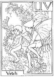 coloring sheets fairy coloring flower fairy obsessed