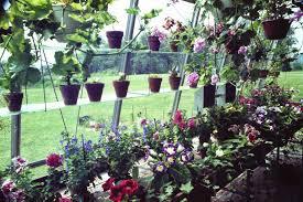 hobby green house garden