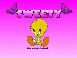 the sylvester tweety mysteri tweety bird wallpaper for iphone 5 the most beautiful bird 2017
