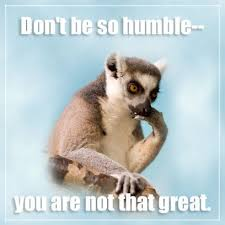Thoughtful Memes - new internet meme lamenting lemur thoughtful quotes meme