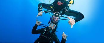 Dive Flag Australia Home