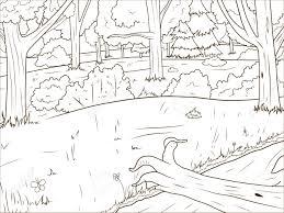 Cartoon Forêt Livre De Coloriage Jeu éducatif Vecteur Llustration