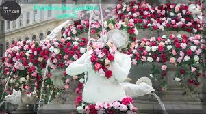 global roses global roses festival in lyon cityzer