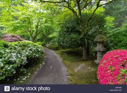 garden path with stone lantern plants and flowers at japanese