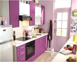 meuble de cuisine aubergine meuble cuisine aubergine bonne qualité galerie artint