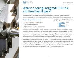 download your spring energized seal guide