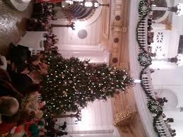 pa governor tom corbett lights the capitol tree plant