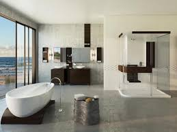 Basement Bathroom Ideas Pictures Basement Bathroom Designs Building Guide 4 Home Ideas
