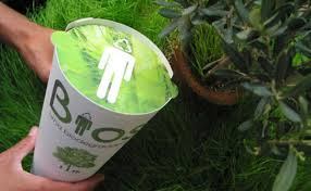 bio urn biodegradable urns turn ashes into trees dejohn funeral homes