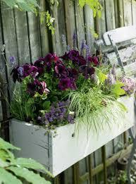 blumenkasten fã r balkon balkonkästen ideen für alle jahreszeiten zum nachpflanzen