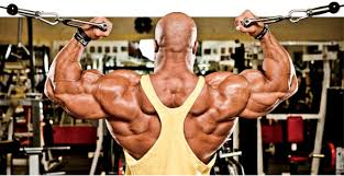 Phil Heath Bench Press Training With The Gift