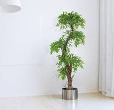 vert lifestyle handmade japanese fruticosa indoor tree