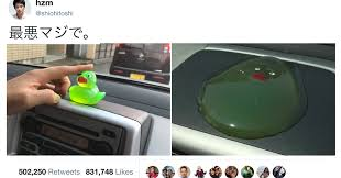 Melting Meme - japanese twitter is trying to debunk this pic of a melted duck smosh