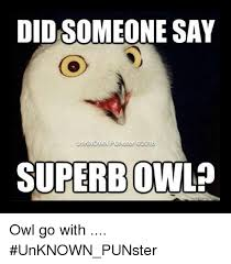 Superb Owl Meme - did someone say superbowl owl go with unknown punster meme on me me