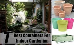 best vegetables for indoor container gardening best idea garden