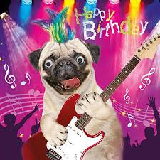 Pug Birthday Meme - holiday pug cards google search buon compleanno pinterest