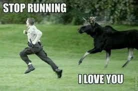 Funny Running Memes - stop running meme
