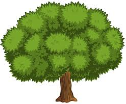large tree png clip image gallery yopriceville high quality