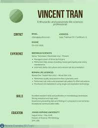Appealing Resume Title Examples Customer by Resume Headline Examples Resume For Study