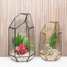 cactus terrarium geometric fallcreekonline org