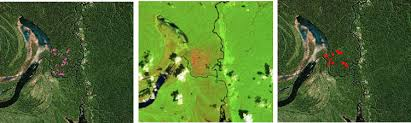 technical caveats to the 2016 tree cover loss data