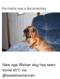 Wiener Dog Meme - 25 best memes about weiner dogs weiner dogs memes