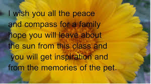 pet condolences condolences for loss of pet