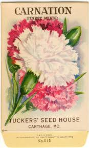 flower seed packets carnation finest mixed vintage flower seed packet tuckers