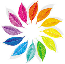 color designs creative color wheel designs