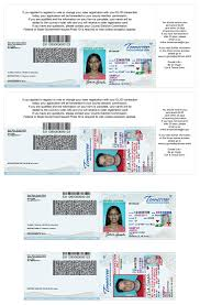driver license card examples tn gov