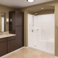 ella low threshold roll in shower traditional bathroom