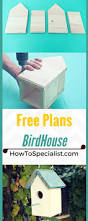 Kid Woodworking Projects Free by 25 Best Bird House Plans Ideas On Pinterest Diy Birdhouse
