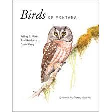 Montana birds images Buteo books aba sales birds of montana jpg