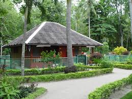 modern bahay kubo design future home pinterest modern