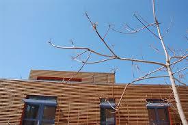 rivestimento listelli legno rivestimento facciata legno