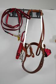 guide dog harness wiley u0027s working gear daily life of a guide dog team