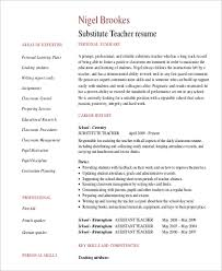 Examples Of Professional Summary For Resumes by Professional Summary Resume Examples