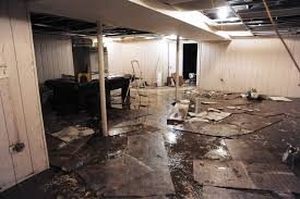 identifying water damage in your basement