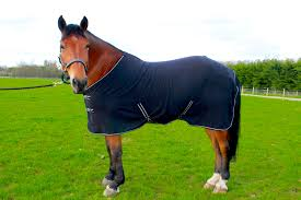 travel pony images Horse cob pony show travel fleece rug 5 39 0 7 39 0 stable cooler jpg