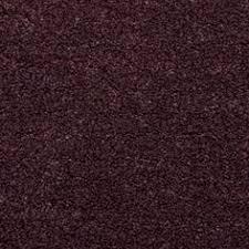 Purple Carpets Purple Carpet Color Me Purple Pinterest Purple Carpet Room
