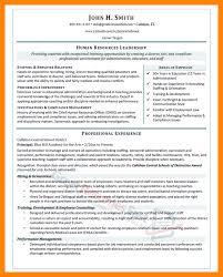 example resume outline resume samples find different career resume