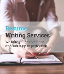 Professional Resume Writers Online by Best 20 Professional Resume Writing Service Ideas On Pinterest