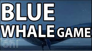 Challenge Kills And You Thought The Whale S Flag Wars Were Bloody Blue Whale