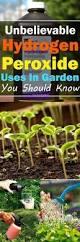 eggshell as organic pest control 55 insanely genius gardening