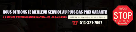extermination low cost service greater montreal 514 321 7867