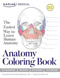 anatomy coloring book book by stephanie mccann eric wise