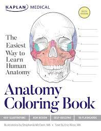 anatomy coloring book book stephanie mccann eric wise
