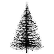fir tree lavinia sts ltd